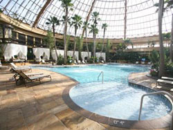 Indoor Pool at Harrah's