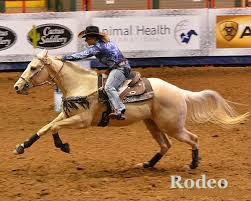 Rodeo""